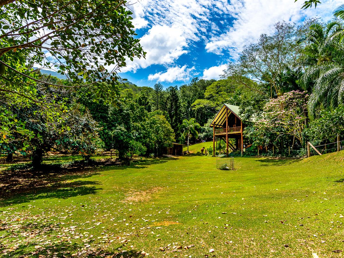 1 ACRE IN REDLYNCH – 2 BEDROOM POLE HOME HIDEAWAY THAT'S HORSE FRIENDLY 🐴